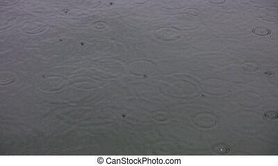 Light rain on the lake.