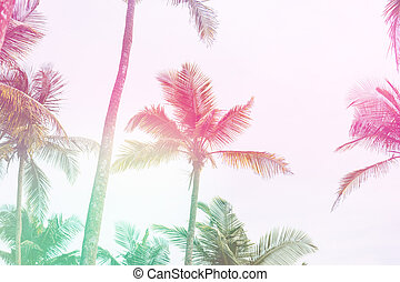 Light Toning Beautiful tropical sunset with palm trees at beach close up
