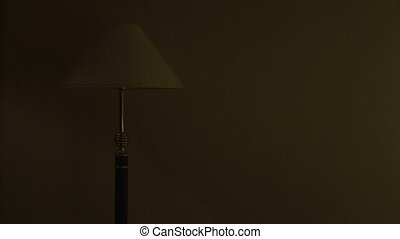 Floor lamp switched on in a dark room