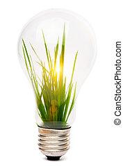 lightbulb, com, planta, crescendo, dentro
