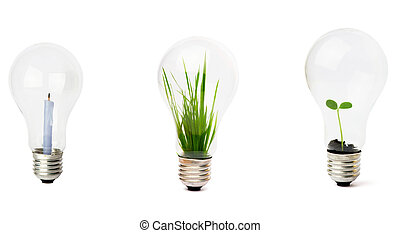 lightbulb, crescente, pianta, dentro