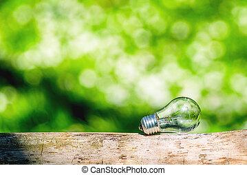 lightbulb, in, helles licht