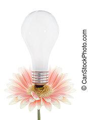 lightbulb on a flower