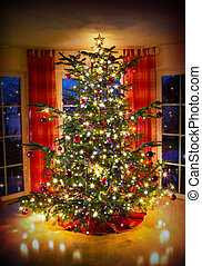 Lighted decorated Christmas tree in living room.