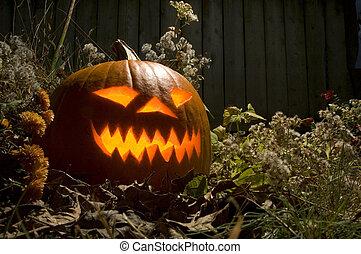Lighted Jack O lantern - Lighted Halloween Jack O Lantern at...
