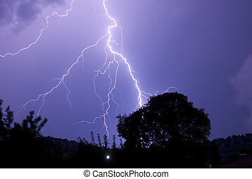 Lightening Roots At Night Striking Near Tree - Thunderstorm...