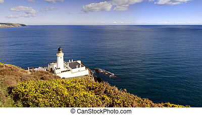 Lighthouse with Yelllow shrub and sea in background