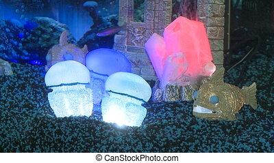 Lighting in aquarium