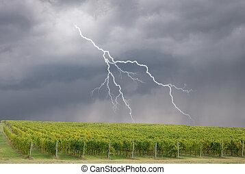 lightning over the vineyard