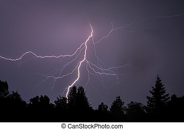 Lightning Silhouettes Trees