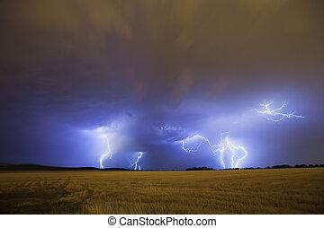 Lightning storm scenery above field