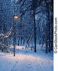 lightpost, winter, -, door, bos, kleine