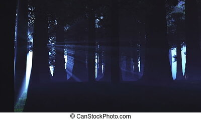 lightrays, nadprzyrodzony, las, 3