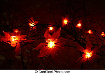 lights - a part of a christmas decoration in the night
