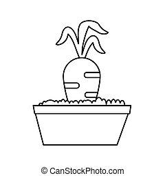 ligne, carotte, jardin, lit, mince