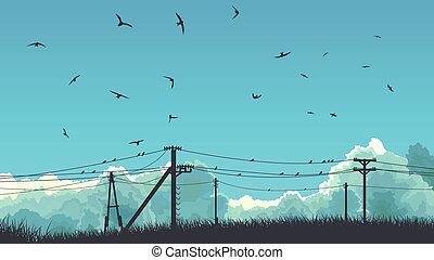 ligne., ciel, oiseaux, puissance