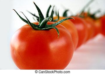 ligne, tomates