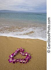 lila, blumenkette, sandstrand, orchidee