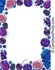 lila, fruta, y, bayas, marco