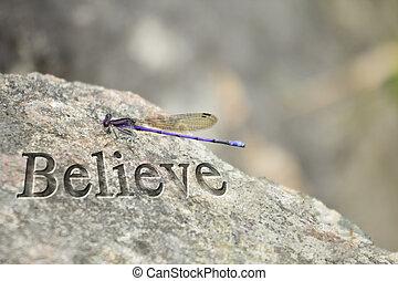 lila, libelle, glauben, gestein