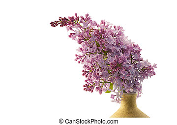 Lilac branch