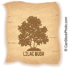 Lilac Bush on Old Paper