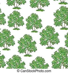 Lilac Bush Seamless - Seamless Pattern, Green Lilac Bush...