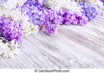 Lilac Flower Wood Background, Blooms Pink Color Flowers...