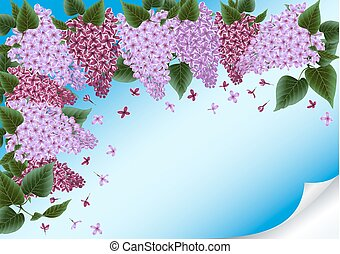 Lilac flowers decoration