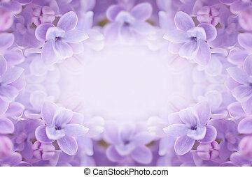 Lilac flowers frame