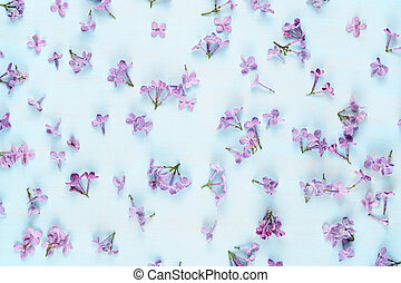 Lilac flowers on blue wooden background