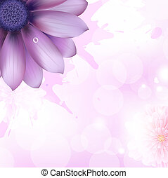 Lilac Gerbers And Paint Splash, Vector Background