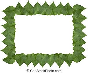 Lilac leaf frame