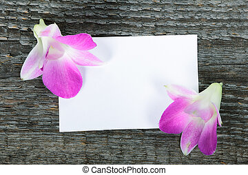 Lilac orchid flowers
