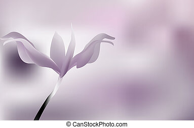 Lilac petals of rose Bud on purple background