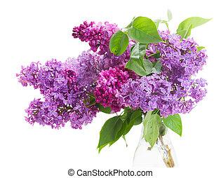 lilas, bouquet