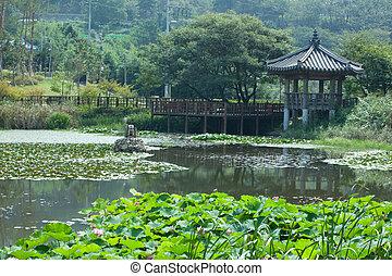 lilie - korea