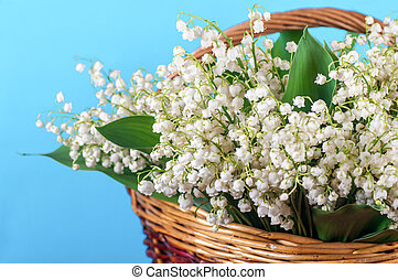 lilies of the valley in a basket on a blue background