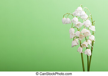 lilies of the valley on a green background