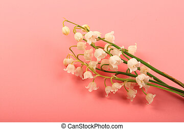 lilies of the valley on a pink background