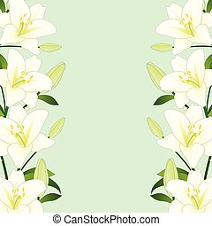 White Lily Border on Green Mint Background