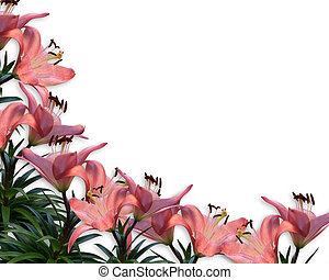 liljor, inbjudan, gräns, blommig, rosa