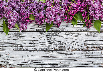 lilla, blomster