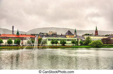 Lille Lungegardsvannet lake in the city centre of Bergen