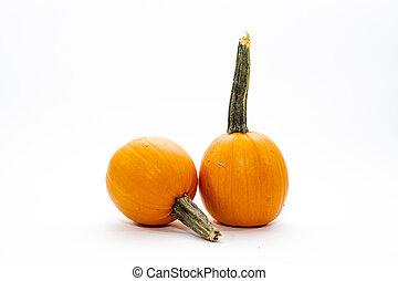 lille, pumpkin