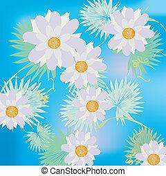 lillies acqua