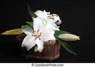 Lillies in a basket