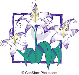Dsign with lillies, color, horticulture, vector