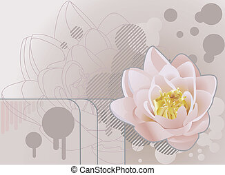 lilly, fundo, ilustração