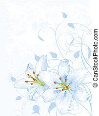 lilly, hintergrund, blaues licht